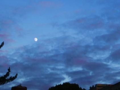 Bruised Blue Sky