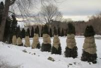 Canvas-shrouded trees